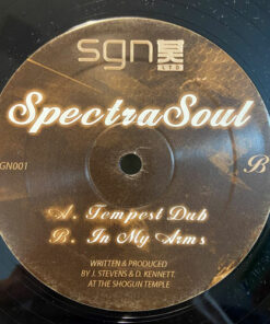 Tempest Dub / In My Arms - SpectraSoul
