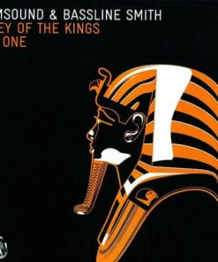 Valley Of The Kings (Part One) - Drumsound & Bassline Smith