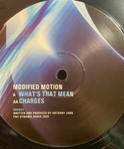 Charges / Whats That Mean - Modified Motion